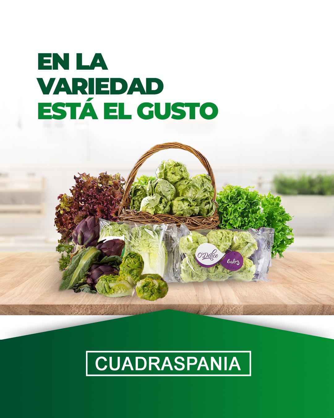 productos-cuadraspania